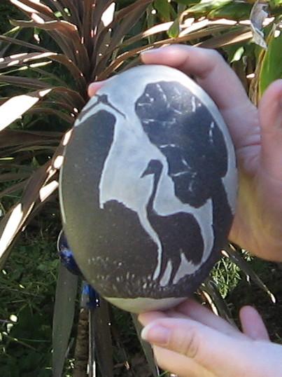 Emu egg 3